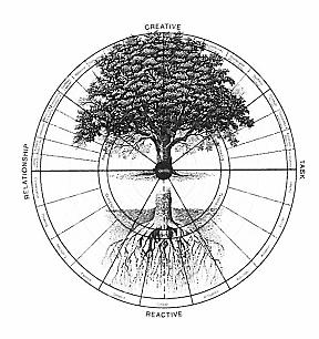 tlc-tree-2
